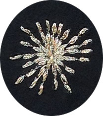 gold-embroidered-star-burst